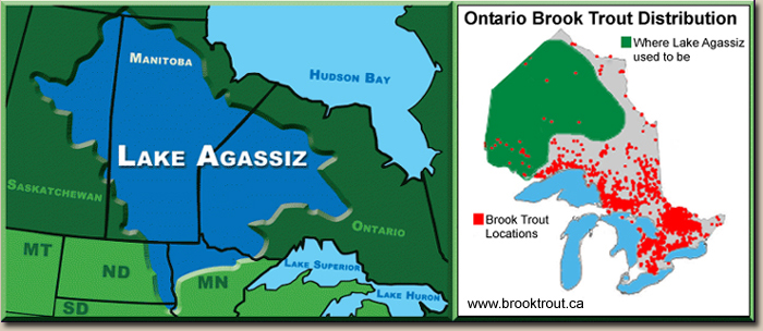 Ontario Brook Trout Fishing Distribution Map